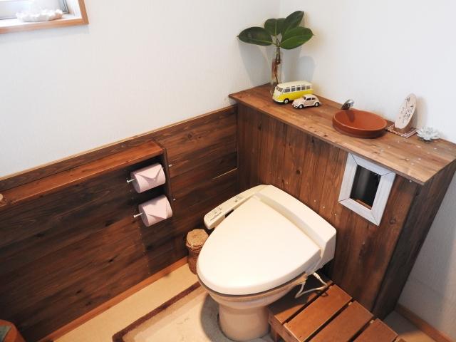 サンスベリアを置くのにおすすめのトイレ